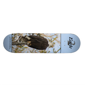 Eagle 2 skateboard deck