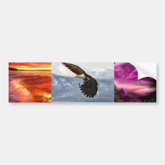 eagle 3# bumper sticker