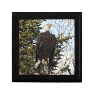 Eagle 3 gift boxes