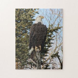 Eagle 3 jigsaw puzzle