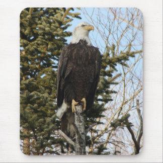 Eagle 3 mouse pad