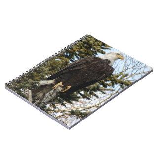 Eagle 3 spiral notebook