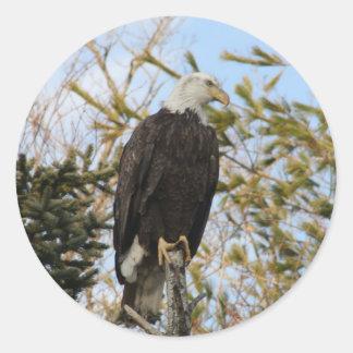 Eagle 4 classic round sticker