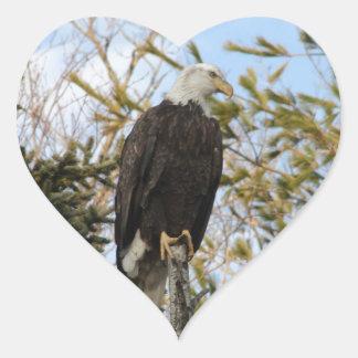 Eagle 4 heart sticker