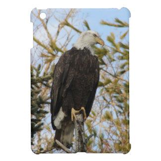 Eagle 4 iPad mini cover
