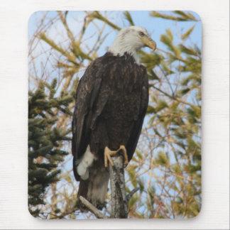 Eagle 4 mouse pad