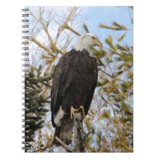 Eagle 4 spiral notebook