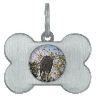 Eagle 4 pet tag