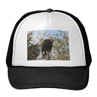 Eagle 4 trucker hat
