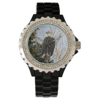 Eagle 6 relojes de mano