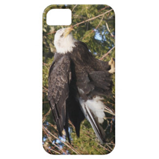 Eagle 7 iPhone SE/5/5s case