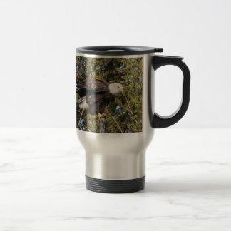 Eagle 7 mugs