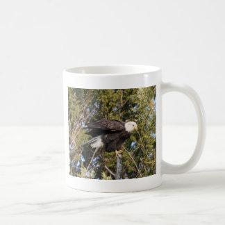 Eagle 7 coffee mugs