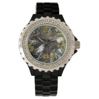 Eagle 8 relojes