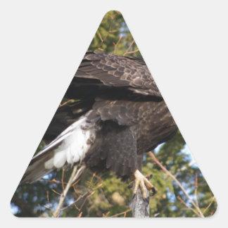 Eagle 8 triangle sticker
