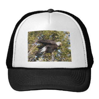 Eagle 8 trucker hat