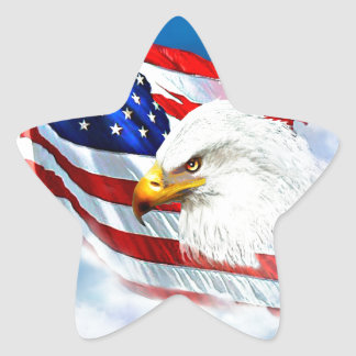 Eagle and American Flag Star Sticker