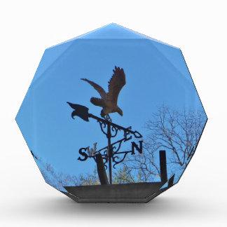 Eagle and Arrow Weather vane blue skys Award