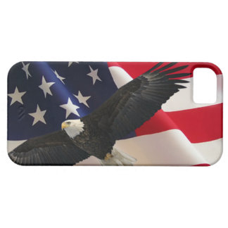 Eagle and Flag 2 iPhone SE/5/5s Case