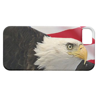 Eagle and Flag iPhone 5 Cover
