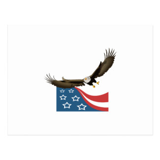 EAGLE AND FLAG POSTCARD