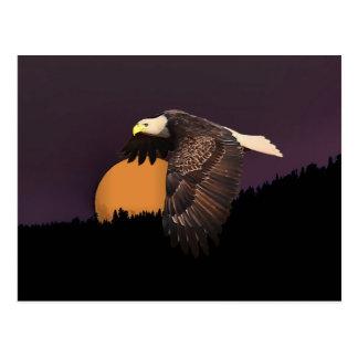 EAGLE AND MOON POSTCARD