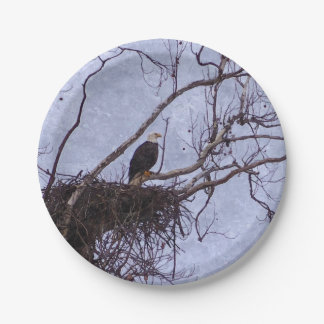 Eagle And Nest Painterly Paper Plate