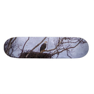 Eagle And Nest Painterly Skateboard