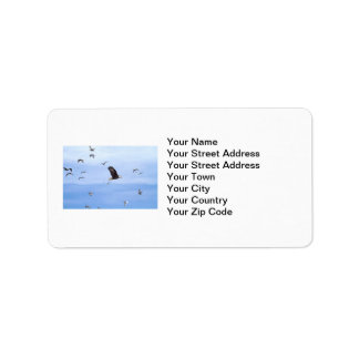 Eagle and Seagulls Flying Address Label