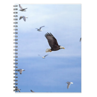 Eagle and Seagulls Flying Notebook