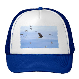 Eagle and Seagulls Flying Trucker Hat