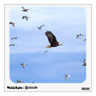 Eagle and Seagulls Flying Wall Decal