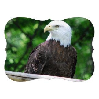 Eagle Announcement
