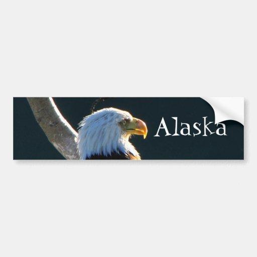 Eagle at Attention; Alaska Car Bumper Sticker