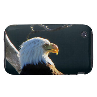 Eagle at Attention iPhone 3 Tough Cover