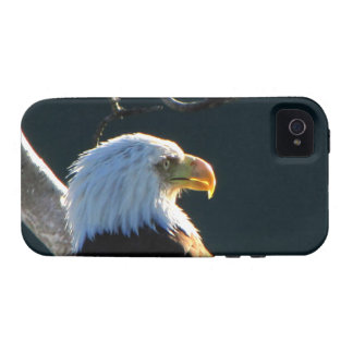 Eagle at Attention iPhone 4/4S Covers