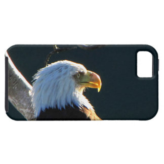 Eagle at Attention iPhone 5 Cases