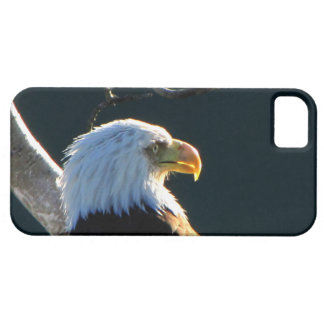Eagle at Attention iPhone 5 Covers
