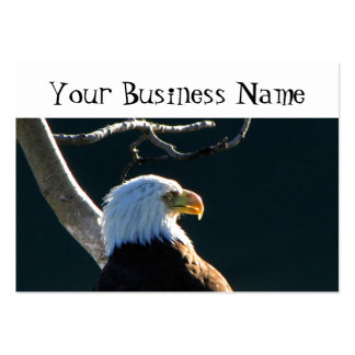 Eagle At Attention Large Business Card