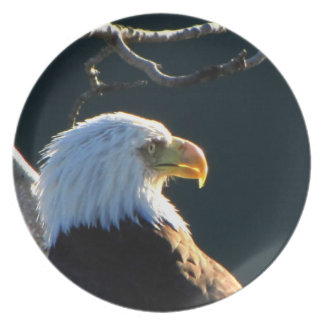 Eagle at Attention Melamine Plate