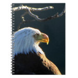 Eagle at Attention Notebooks