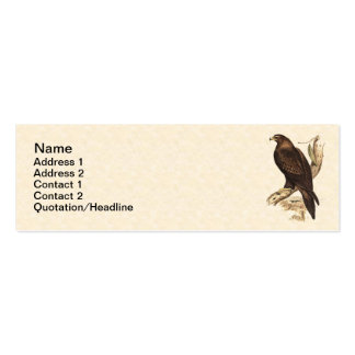 Eagle atado cuña australiana. Ave rapaz enorme Tarjetas De Visita Mini