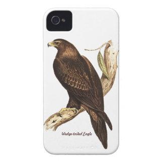 Eagle atado cuña. Un ave rapaz magnífica iPhone 4 Funda