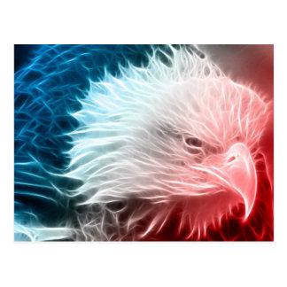 Eagle blanco y azul rojo postales