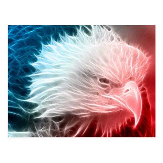 Eagle blanco y azul rojo tarjetas postales