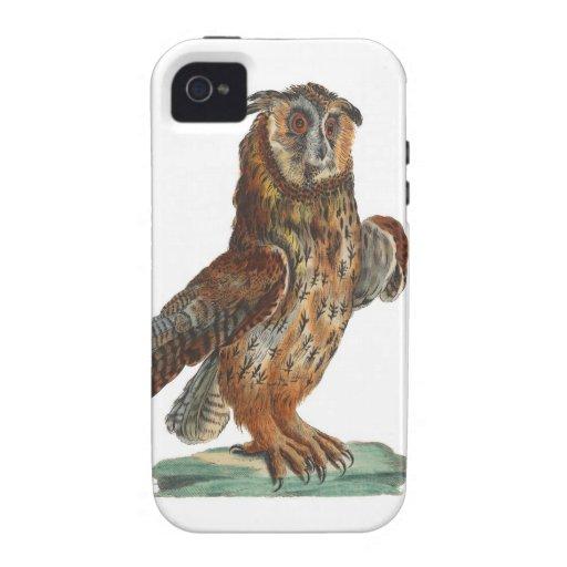 Eagle-Búho - bubón del bubón Case-Mate iPhone 4 Funda