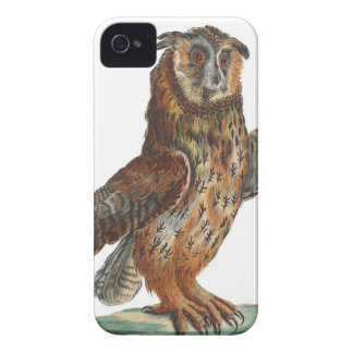 Eagle-Búho - bubón del bubón iPhone 4 Case-Mate Funda