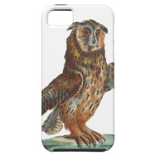 Eagle-Búho - bubón del bubón iPhone 5 Carcasa