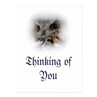 Eagle-búho eurasiático que piensa en usted postal