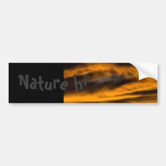 eagle burnout bumper sticker